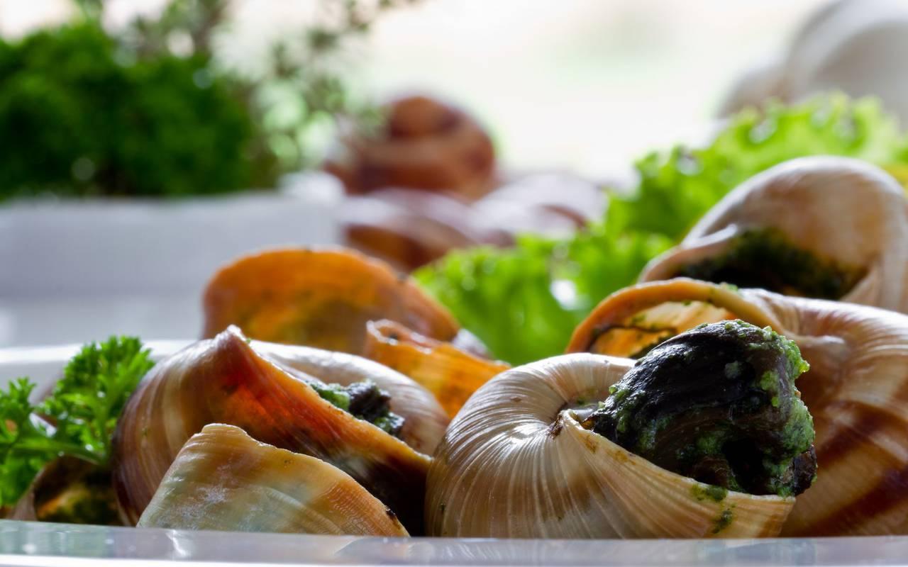 Escargots gastronomie bourgogne