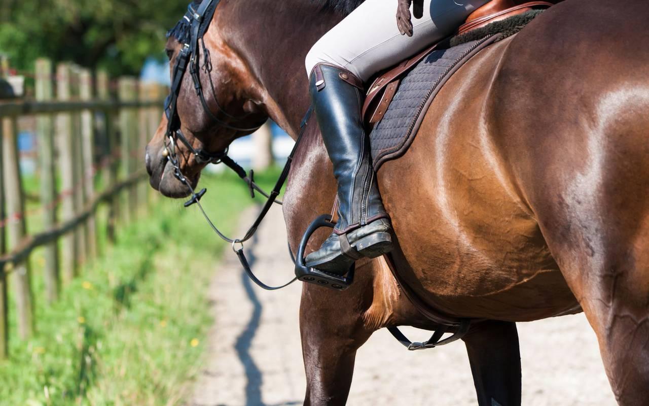Equitation week end en amoureux cote d or